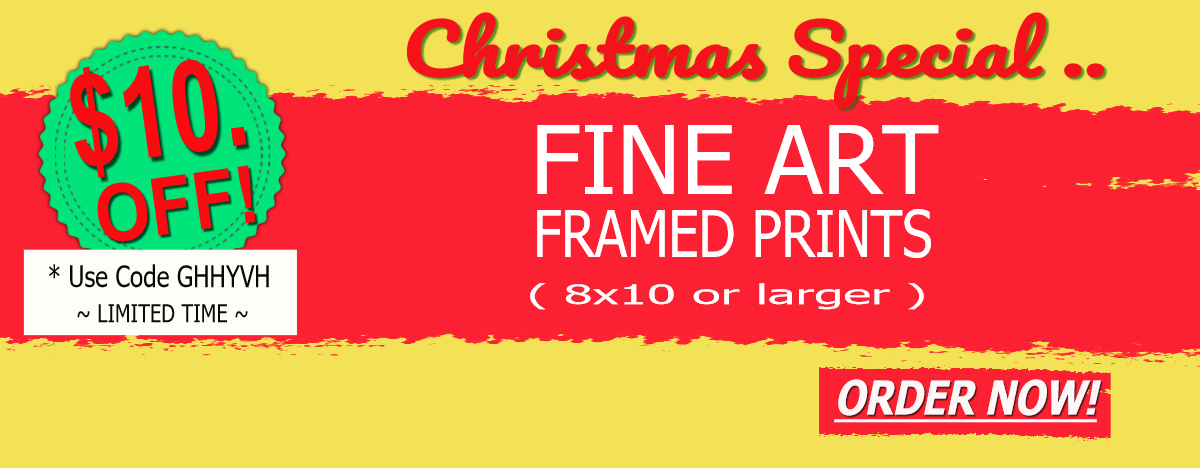 Fine Art Photo Christmas Sale